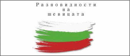 Разнообразието на българската шевица